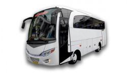 Bus 30 Seat