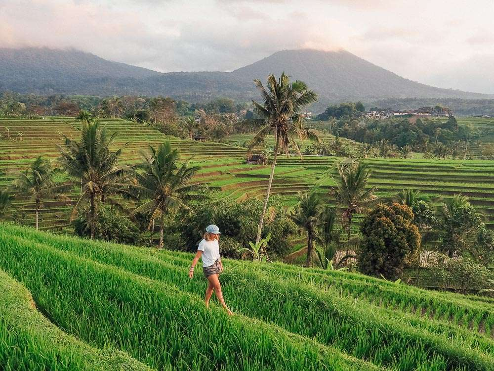 Bali Three Days Tour Package 4