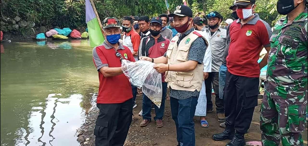 Swadaya Masyarakat Ribuan Benih Ikan Nileum ditebar disungai Cikadondong.